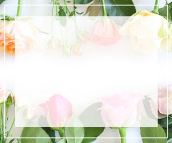 バラ図鑑のトップページへのバナー