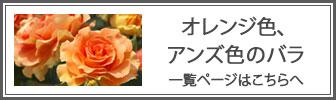 オレンジ色のバラの一覧ページへのバナー