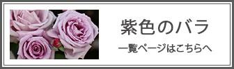 紫色のバラの一覧ページへのバナー